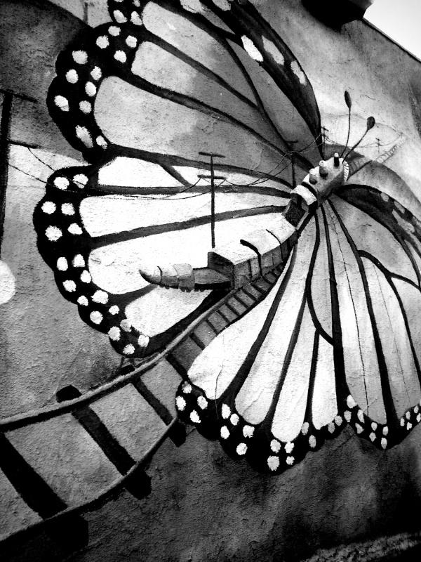 butterfly train