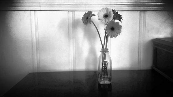 flowers in a milk jar