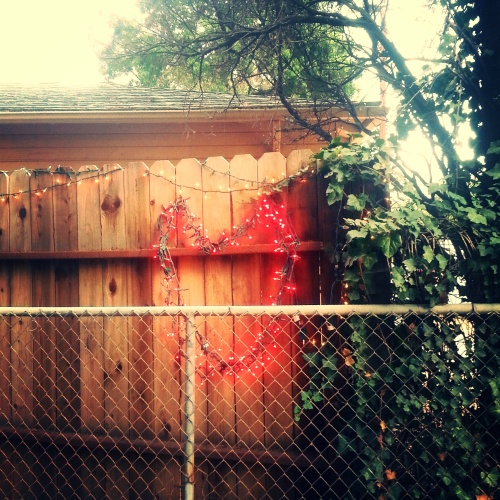 love , climb aboard the gate