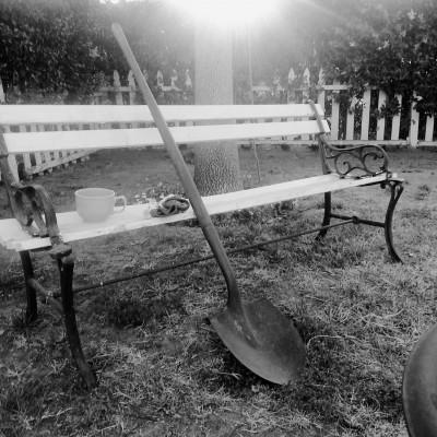 a break in the garden