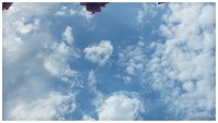 cloudy sky and a peeking bougainvillea