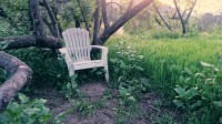trail At goodland, the Chair